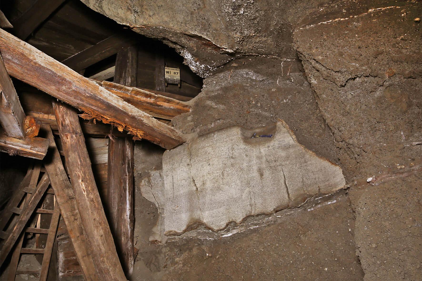 Bryła soli dolomitycznej tkwiąca w zubrach