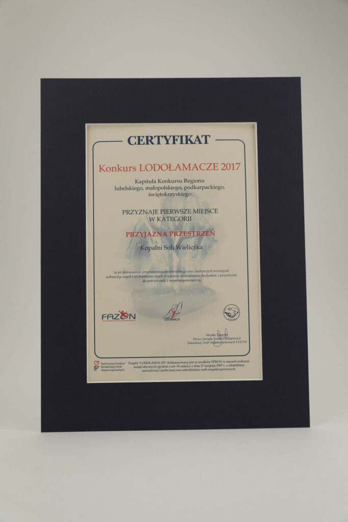 Lodolamacz 2017 regionalny dyplom