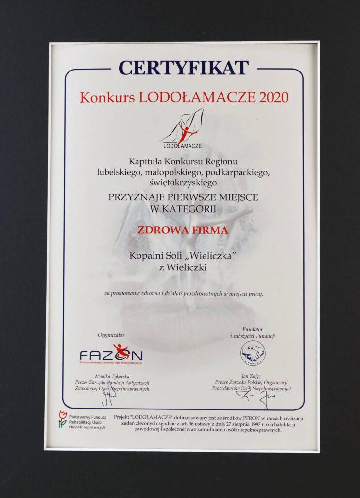 Lodolamacz 2020 regionalny dyplom