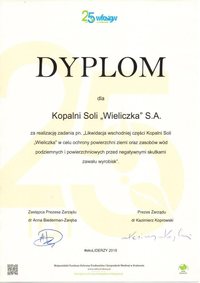 ekoLider dyplom